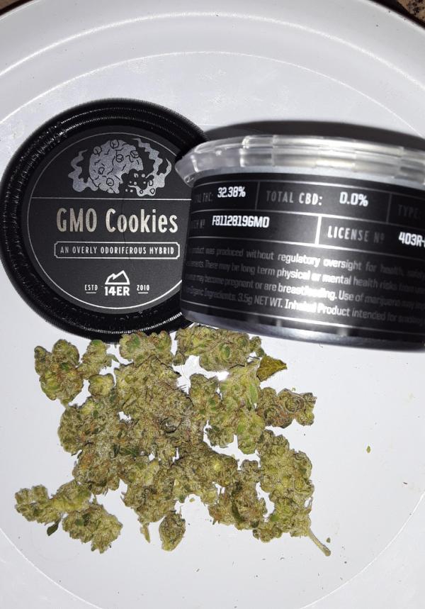 gmo cookies weed strain