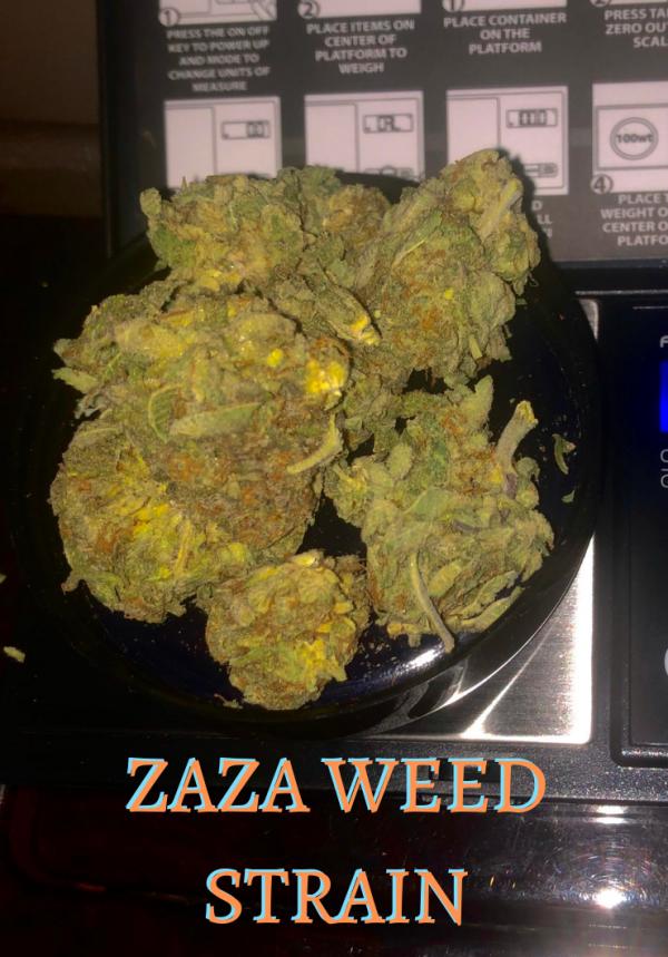 za weed strain, zaza marijuana
